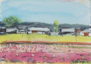 Tulpenfelder Holland